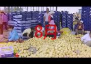 """渭南市""""促消费 惠民生 助脱贫""""系列活动宣传片"""