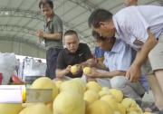 澄城:果品丰收果农乐 多方发力促销售