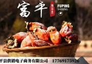 富平县扶贫产品