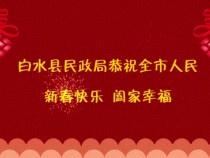 白水县民政局向全市人民拜年