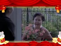 看过来!渭南广播电视台春节期间好剧连连看