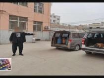蒲城:危险!29个液化气罐塞进面包车