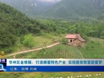 华州区金堆镇:打造蜂蜜特色产业  实现脱贫致富甜蜜梦