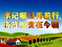 临渭区桥南镇畅家村:补短板提弱项 产业助力群众脱贫摘帽