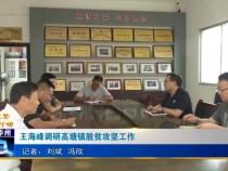 王海峰调研高塘镇脱贫攻坚工作