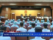 临渭区公开开庭审理海某甲海某乙等二十八人涉嫌寻衅滋事罪一案