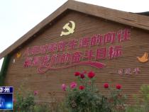 渭南市华州区杏林镇:齐心协力强推进   共创文明取成效
