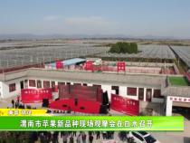 渭南市苹果新品种现场观摩会在白水召开