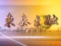 东秦金融10月08日
