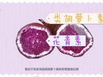 【渭南科普】紫薯好看但不是转基因品种