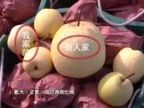种梨买到问题肥  投诉遭遇索赔难