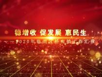 稳增收 促发展 惠民生——2020年临渭区桥南镇工作汇报