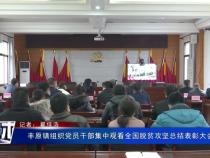 丰原镇组织党员干部集中观看全国脱贫攻坚总结表彰大会