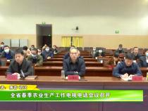 全省春季农业生产工作电视电话会议召开