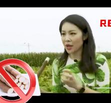 大型吃播现场央视小姐姐一手拔出比人都高的蔬菜,这竟是沙土地里的黄金