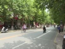 潼关县档案馆项目至今未开工