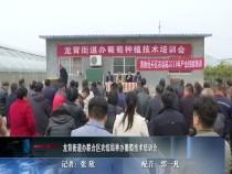 龙背街道办联合区农综局举办葡萄技术培训会