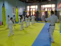 渭南市第七届少儿春晚节目选拔走进极真空手道搏击俱乐部