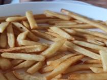文明餐桌 光盘行动:抢着吃也是一种快乐