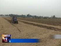 渭南华州区:播种耐密品种玉米 促进增密度提单产