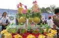 蒲城县十三万亩西甜瓜开园迎宾客