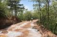 韩城农村通村公路拓宽提升今年年底完成