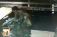 蒲城一男子盗窃珠宝店被刑拘 监控记录盗窃全过程