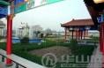 """大荔太丰村:有""""颜值""""更有产值"""