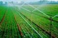 澄城突出延伸产业链条 促进农业附加值增加