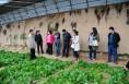澄城 1.1亿元小额贷款助力脱贫攻坚