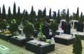 全省农村公益性公墓建设现场会在大荔县召开