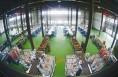 富平柿饼加工实现自动化 生产周期缩短至10天