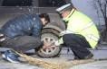 受降雪影响 渭南车管所1月8日、9日考试调整日期
