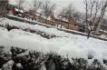 上周降雪 造成渭南9区县直接经济损失1.2亿元