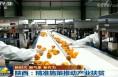 央视《新闻联播》关注陕西扶贫 富平订单模式助农致富