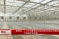 临渭区:4.2亿元建设花卉苗木现代农业示范基地 打造城市后花园