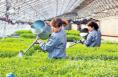 澄城县新增1家省级新型职业农民实训基地