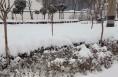 2日-4日渭南强降雪 蒲城降雪量最大积雪23cm
