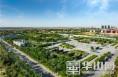 渭南高新区: 绿化绘就最美底色 用心铺开森林画卷