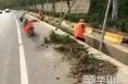 韩城积极开展农村公路防汛保通保畅工作