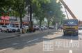 渭南城区东风大街216组崭新路灯大气美观月底扮靓城市街景
