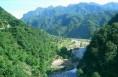 把实现秦岭长效化保护当作贯彻绿色发展理念的标尺