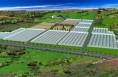 合阳县:高效农业让群众四季来财