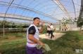 农耕健身大赛喜庆落幕 趣味运动项目庆丰收