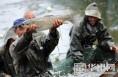 国庆小长假游客到大荔范家镇看捕鱼抓河蟹成一景