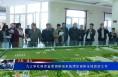 九三学社陕西省委调研组来临渭区调研全域旅游工作