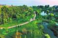 一城绿树满城荫 合阳:打造渭北旱塬的