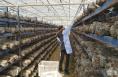 蒲城县:打造工业强县 助力产业脱贫