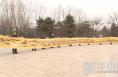 潼关:十字绣达人精心绣成22.6米长《清明上河图》
