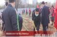 渭南高新区党员干部开展义务植树活动